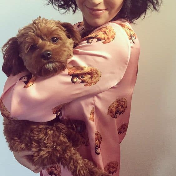 katy perry wearing a pajama with a print of her cavapoo, butters, face