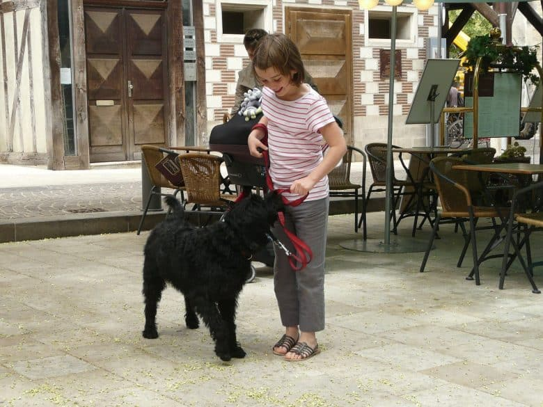 Kid out with her black Labradoodle on a leash