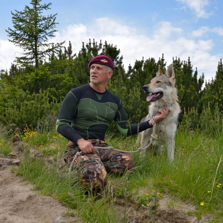 A Czechoslovakian Wolfdog with its owner