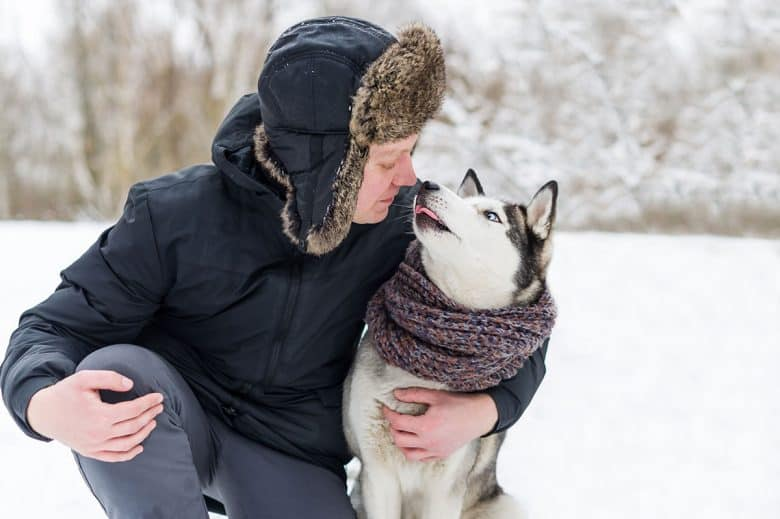 Owner kisses Siberian Husky