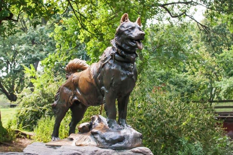 Siberian Husky Statue