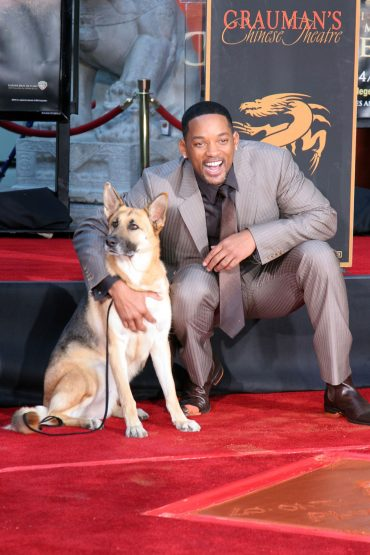 German Shepherd with Will Smith