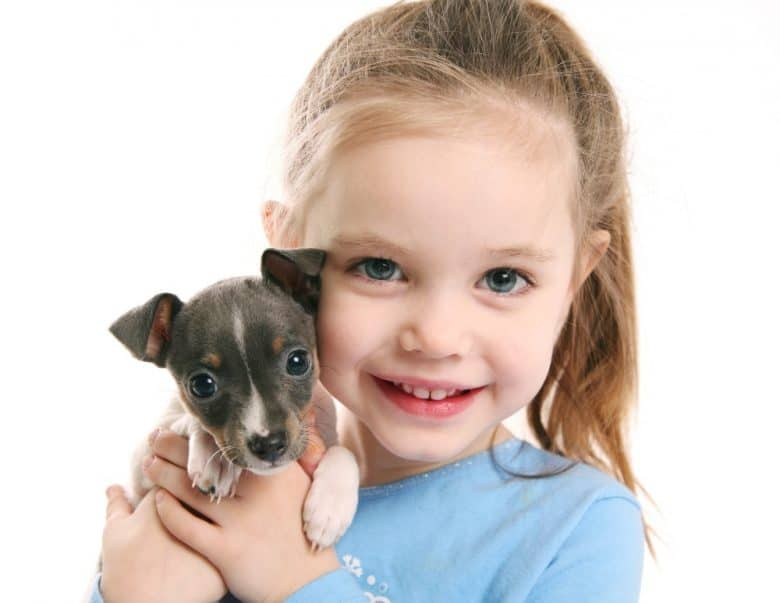 Cute little girl holding a puppy