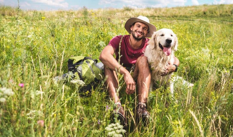 Traveler sitting with dog on green summer meadow