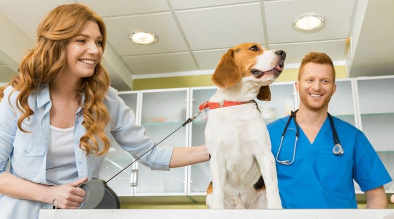 Woman with her dog at veterinary clinic