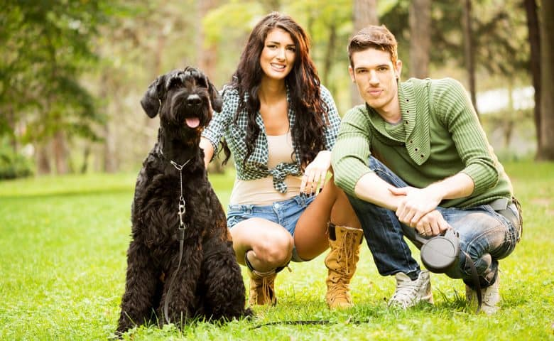 Young couple with Giant Schnauzer dog