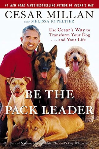 Cesar's Way to Transform Your Dog and Your Life