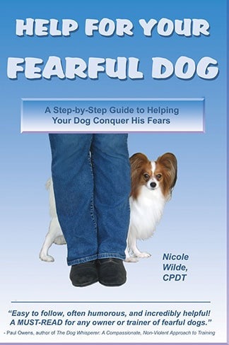 Guide to Helping Your Dog Conquer His Fears