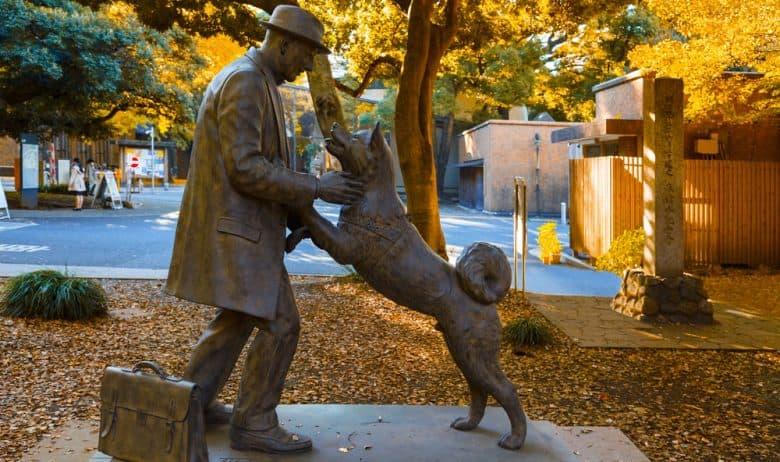 The Hachiko with Dr. Hidesaburo Uenu statue