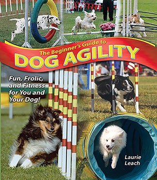 The Beginner's Guide to Dog Agility
