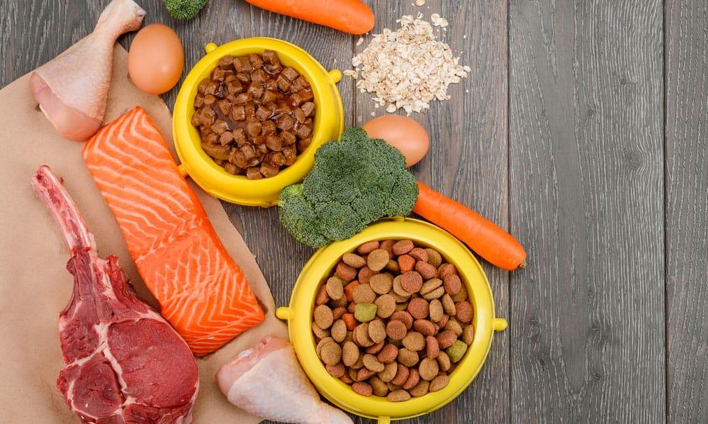 A balance formula foods for dog