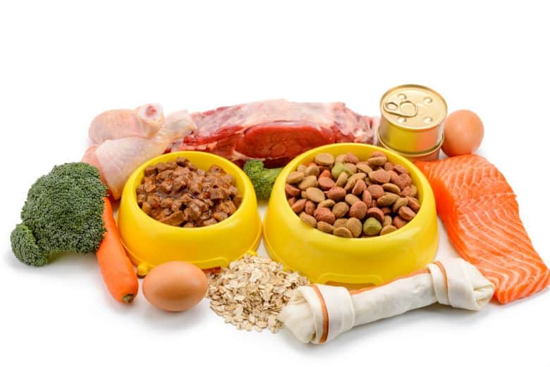 Veggies and meats surrounding wet and dry dog food