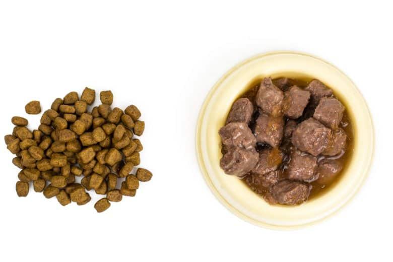 Dry dog food and wet dog food