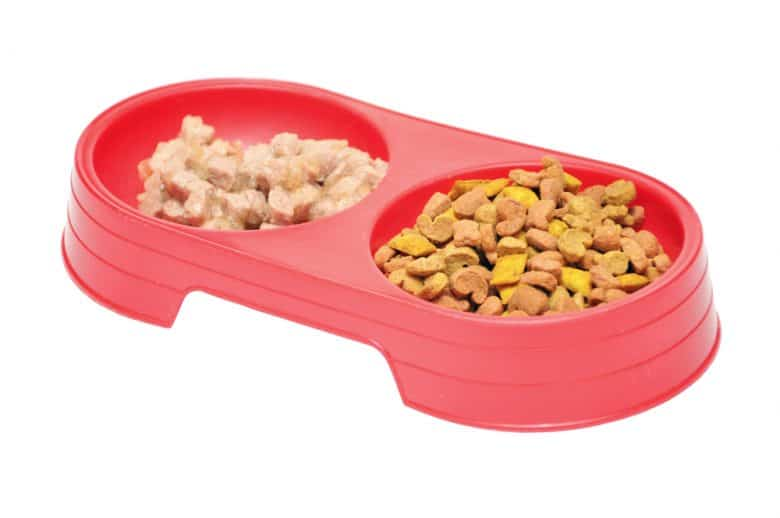 a red dog bowl with wet and dry dog food