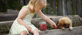 Cute girl feeds a little puppy with raspberries