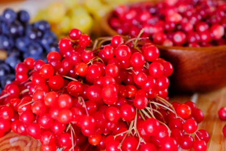 Delicious and nutritious cranberries